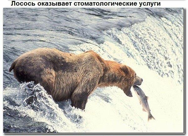Подборка старых мемов и баянов_28 фото_ (15)