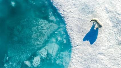 Победители фотоконкурса Drone Photography Competition: аэрофотоснимки со всего мира