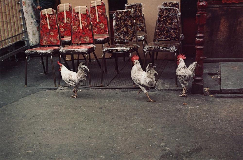 Уличная жизнь Нью_Йорка с 1930_х до 80_х годов в фотографиях Элен Левитт 11