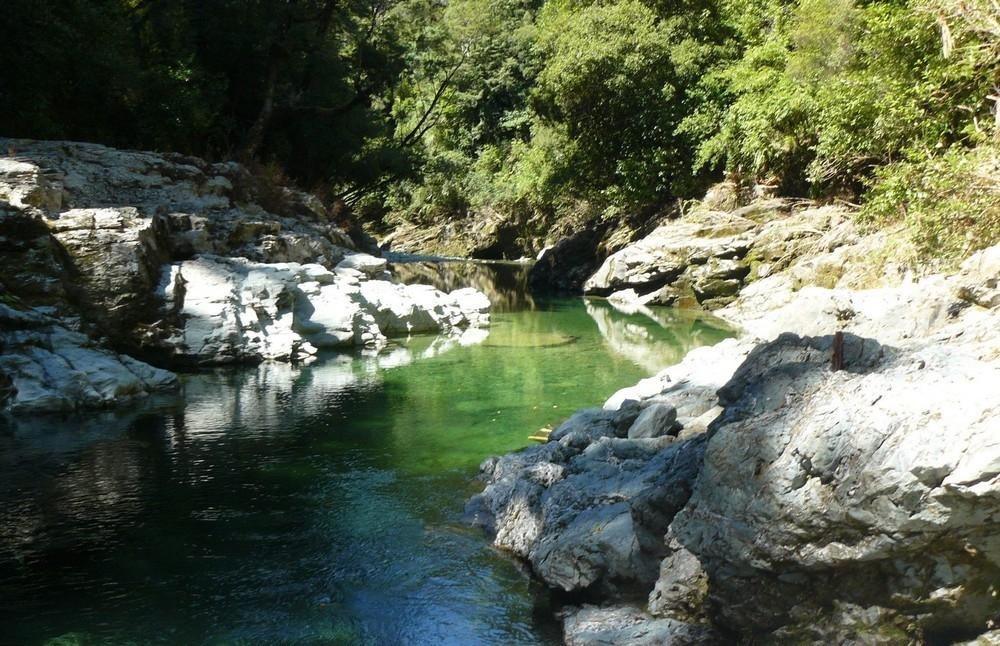 В Новой Зеландии продается участок золотоносной реки всего за _75 000 (1)