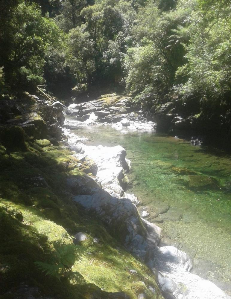 В Новой Зеландии продается участок золотоносной реки всего за _75 000 (3)