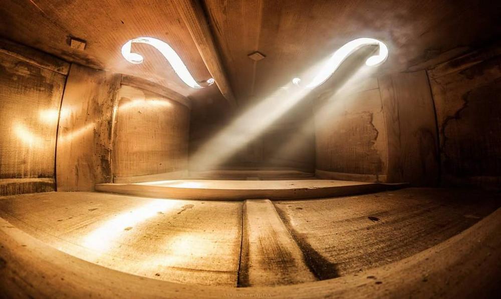 Волшебные фотографии_ снятые внутри виолончели и других музыкальных инструментов 5