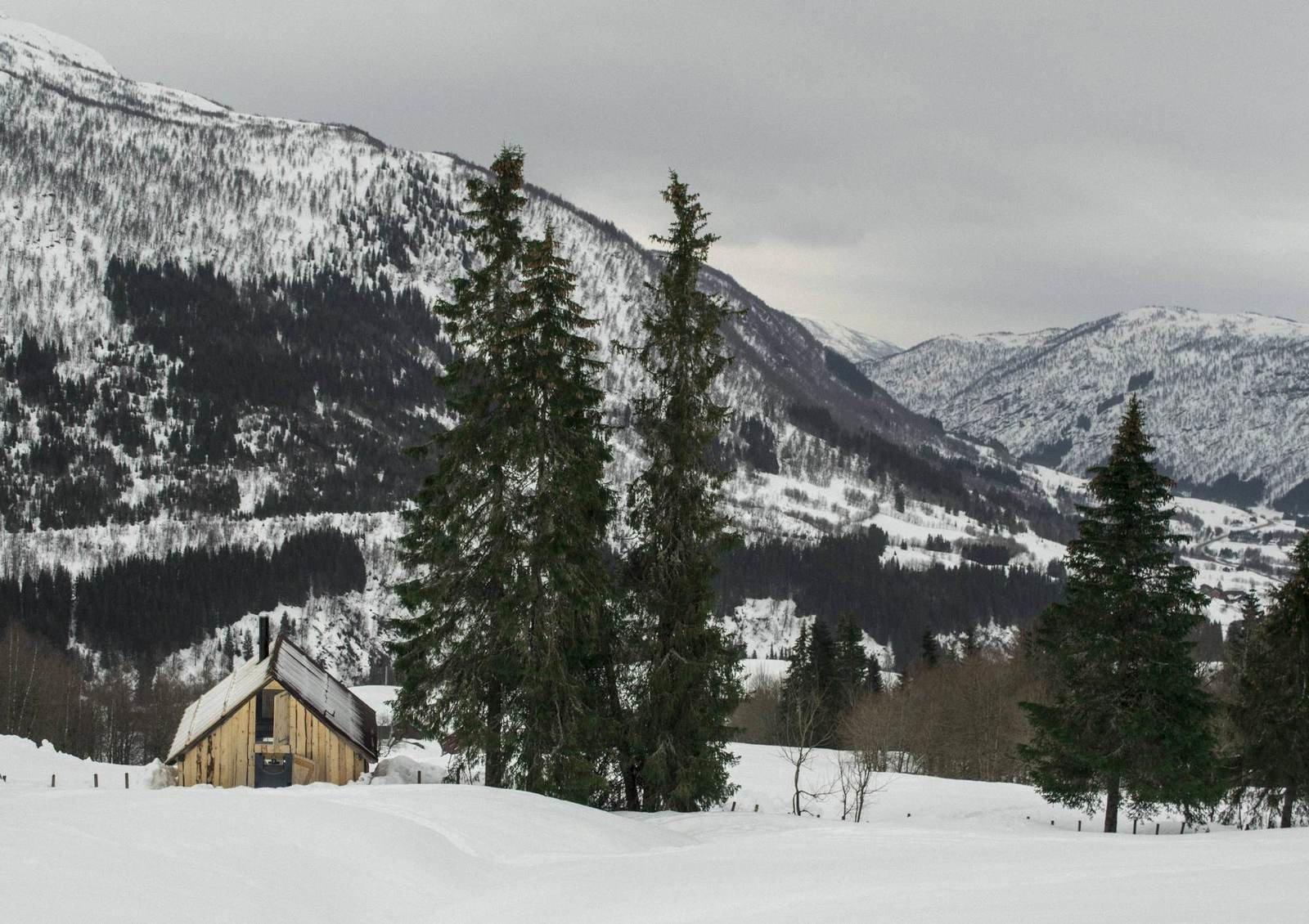 Домик из старого сарая в Норвегии (1)