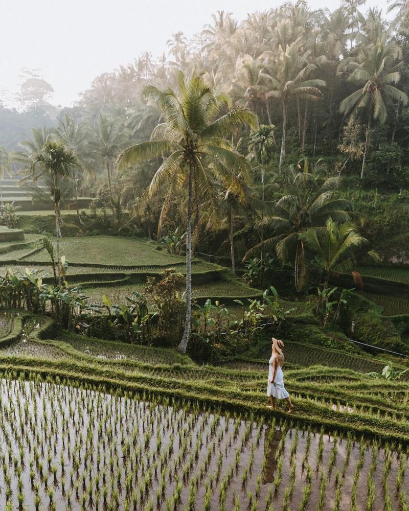 Индонезия сверху_ аэрофотоснимки Сута Рахади (20)