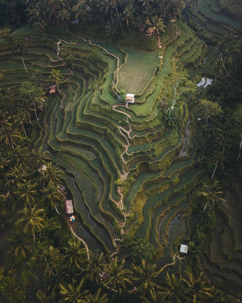 Индонезия сверху_ аэрофотоснимки Сута Рахади (8)