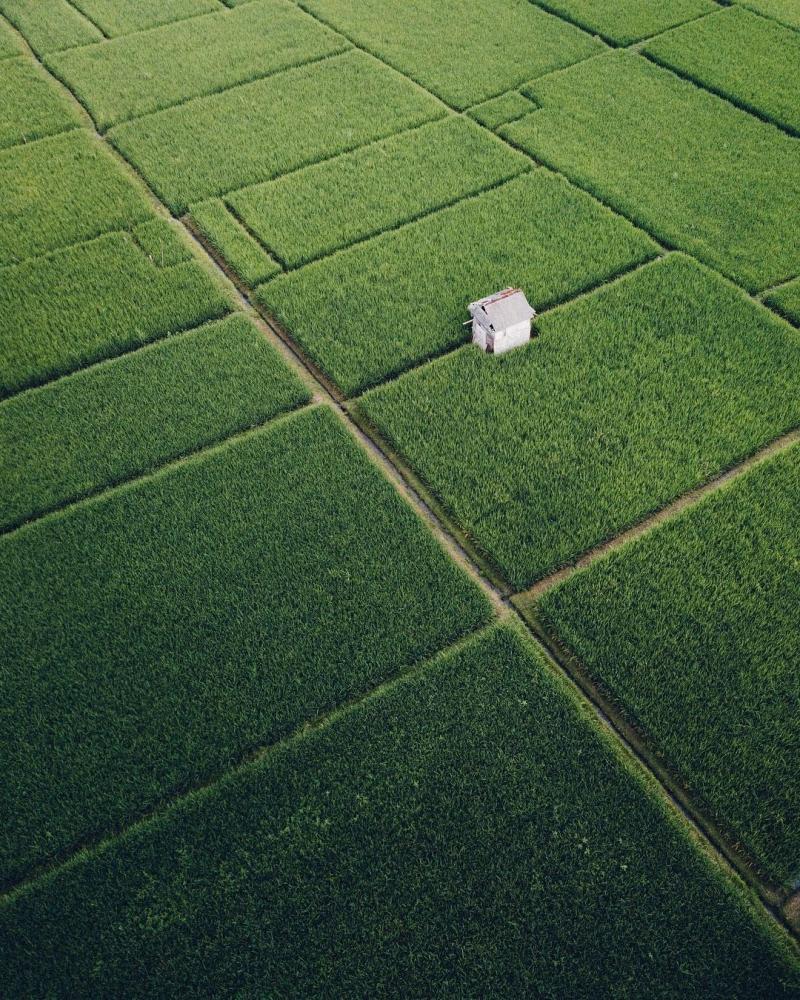 Индонезия сверху_ аэрофотоснимки Сута Рахади (9)