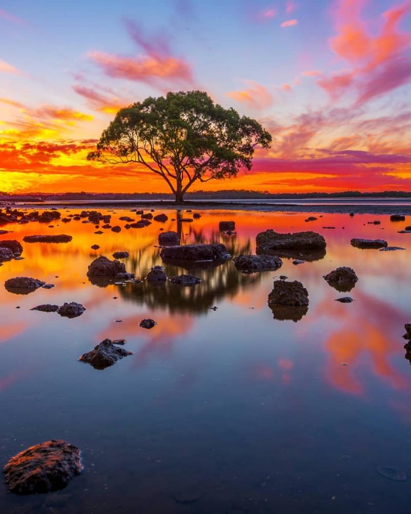 Красивые австралийские пейзажи на снимках Митчелла Петтигрю (10)