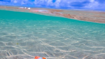 Потрясающая красота Австралии на фото Митчелла Петтигрю