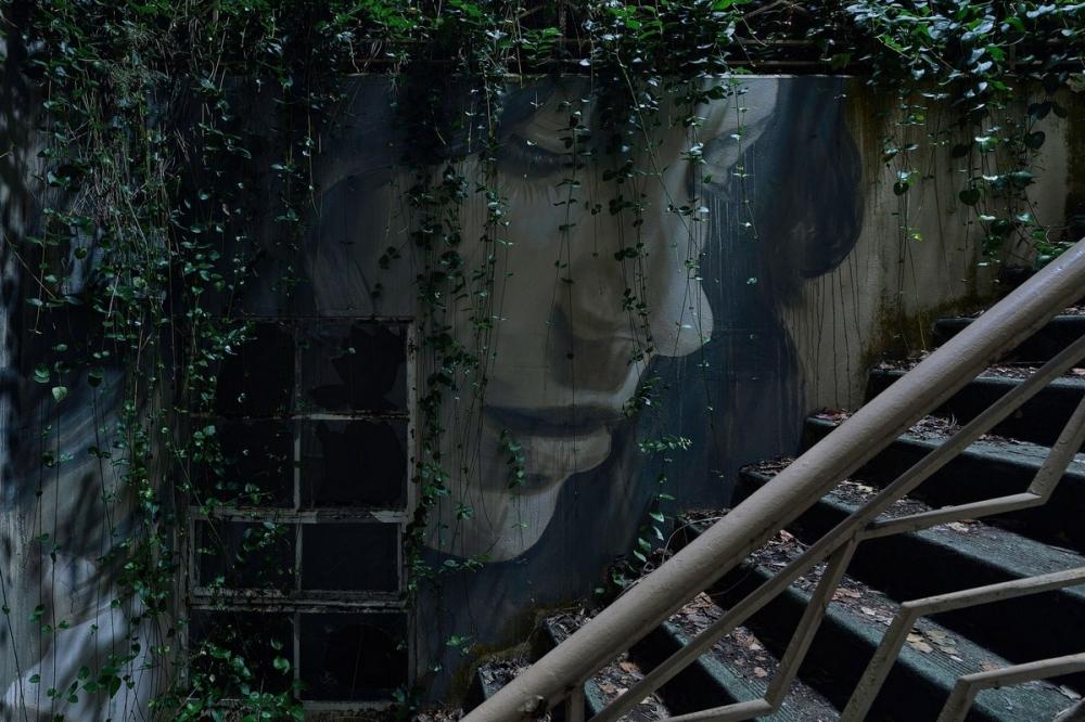 Красота среди руин_ художник превратил заброшенный особняк в уникальный арт_объект (1)