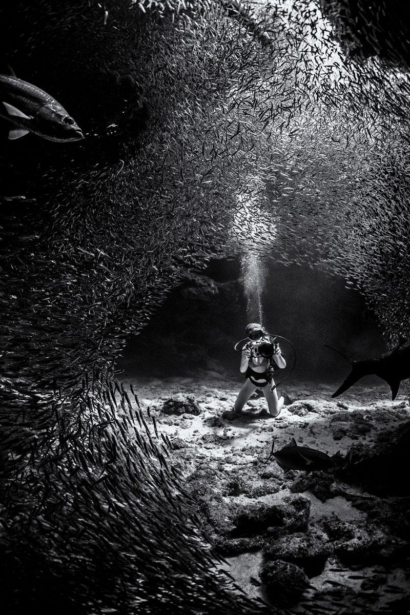 Жизнь морских глубин в работах победителей конкурса «Подводный фотограф года – 2019» 14