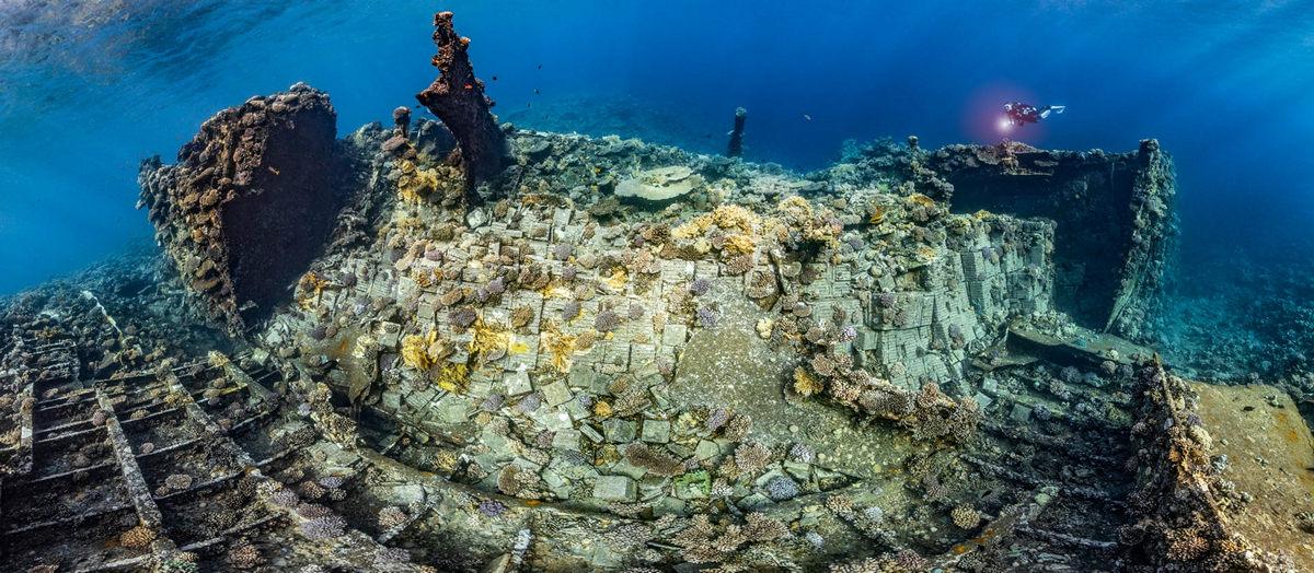 Жизнь морских глубин в работах победителей конкурса «Подводный фотограф года – 2019» 7