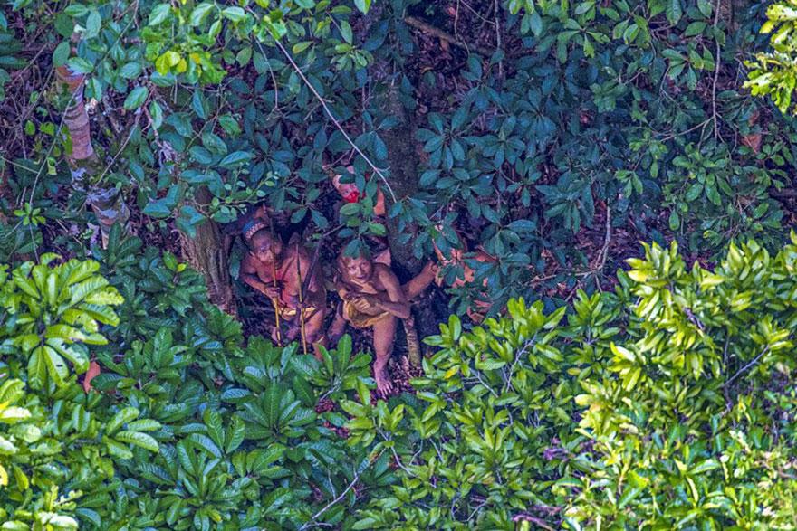 foto-dikogo-plemeni-s-Amazonki-1
