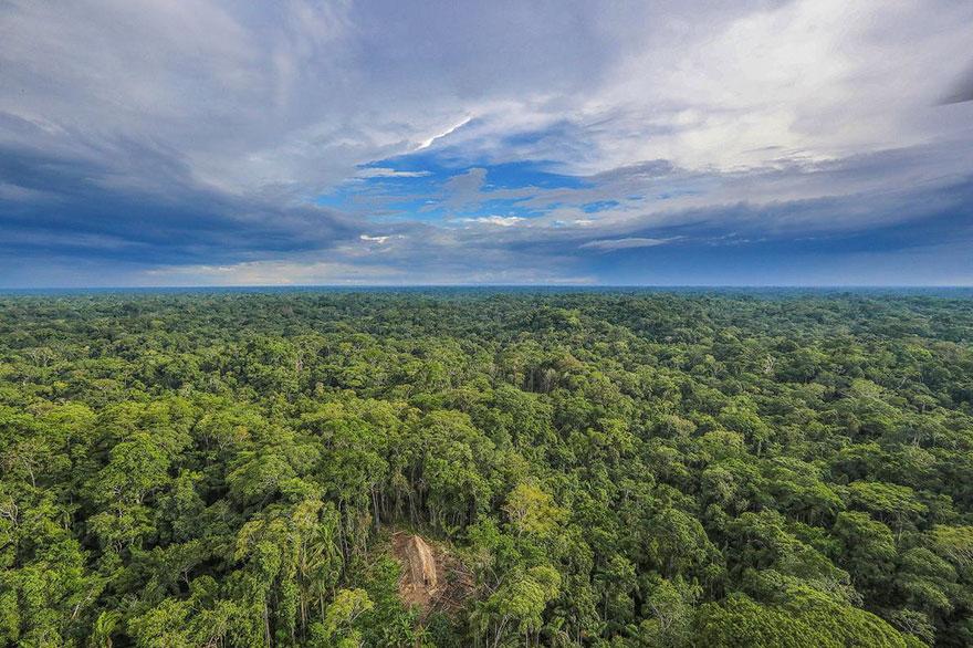 foto-dikogo-plemeni-s-Amazonki-2