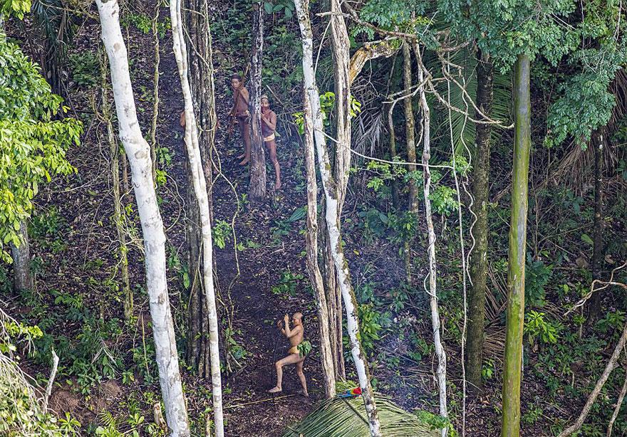 foto-dikogo-plemeni-s-Amazonki-3