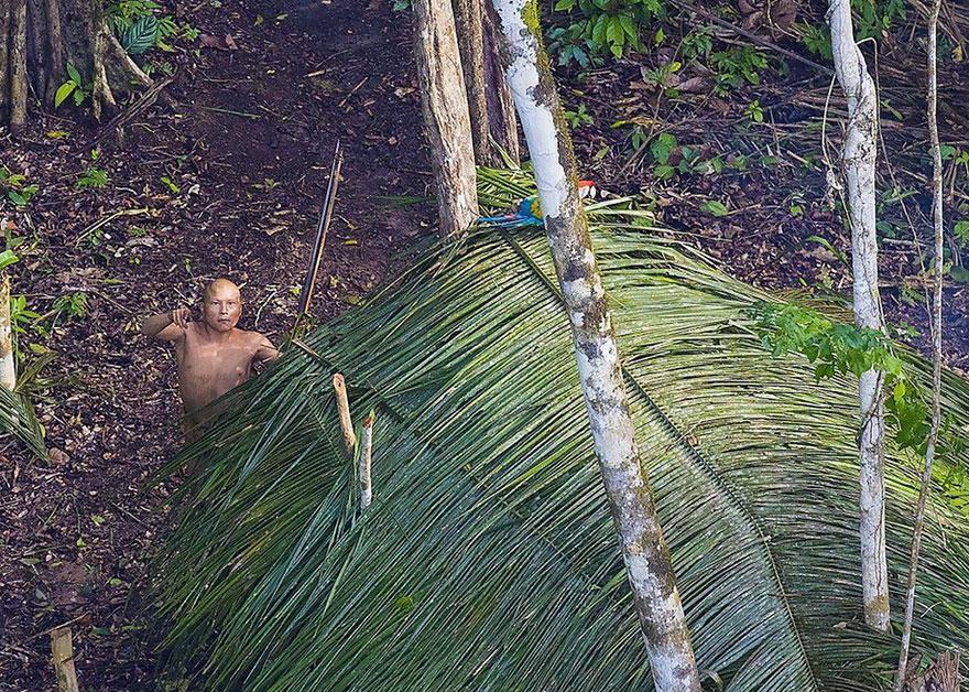 foto-dikogo-plemeni-s-Amazonki-4