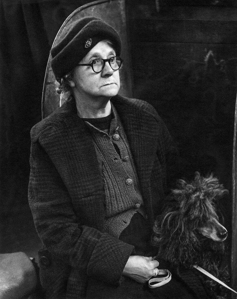 «Дай_ Джим_ на счастье лапу мне»_ фотографии Ширли Бейкер с выставок собак 1960_70_х 14