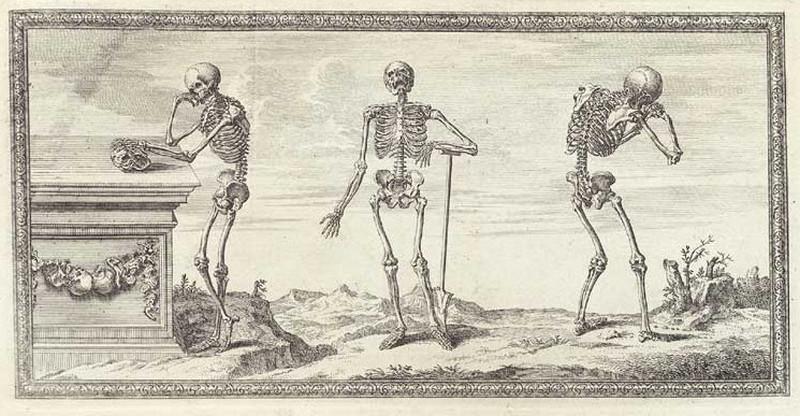 Достоверность и изящество в костях. «Остеография» Уильяма Чеселдена (1733) 1