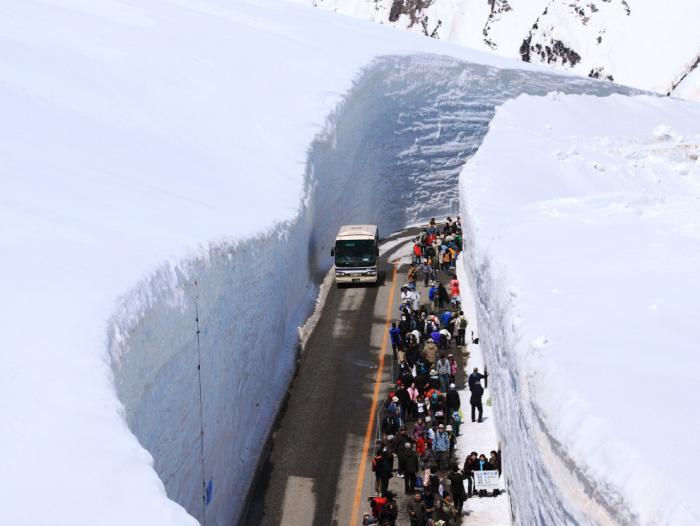 Прогулка по Tateyama Kurobe Alpine (13 фото) (12)