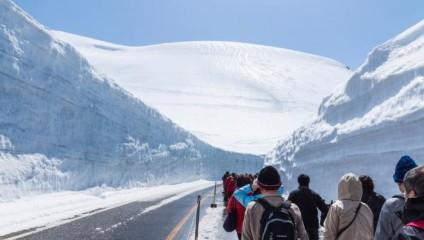 Снежный коридор в Японии: живописный Tateyama Kurobe Alpine в фото