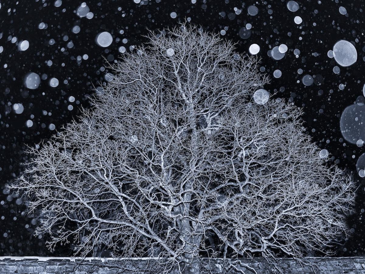 Созерцательные и абстрактные_ работы победителей конкурса «Пейзажный фотограф года – 2018» 9