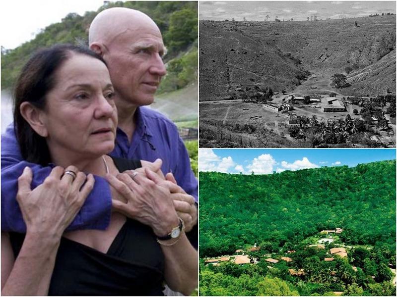 Фотограф со своей женой восстановили лес с 2 млн деревьев