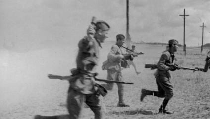 Без купюр: фотоснимки войны 1941-1945 гг.