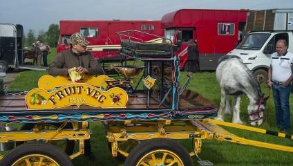Лошадиный парад: фотографии фестиваля в Великобритании