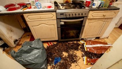 Как сумасшедший арендатор разгромил дом