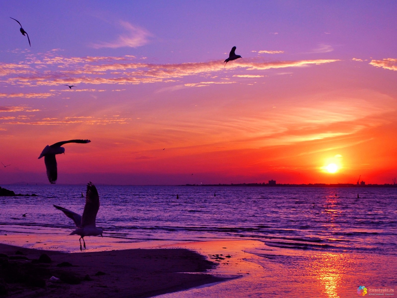 Photos_of_sunsets_12
