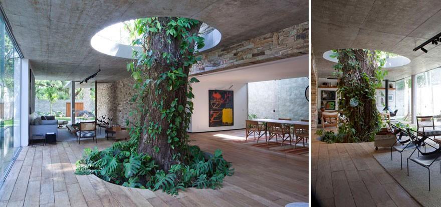 architecturearoundtrees06