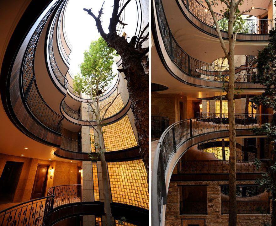 Здания, архитекторы которых решили не рубить деревья