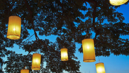 Привлекательные задумки по освещению сада на дачном участке