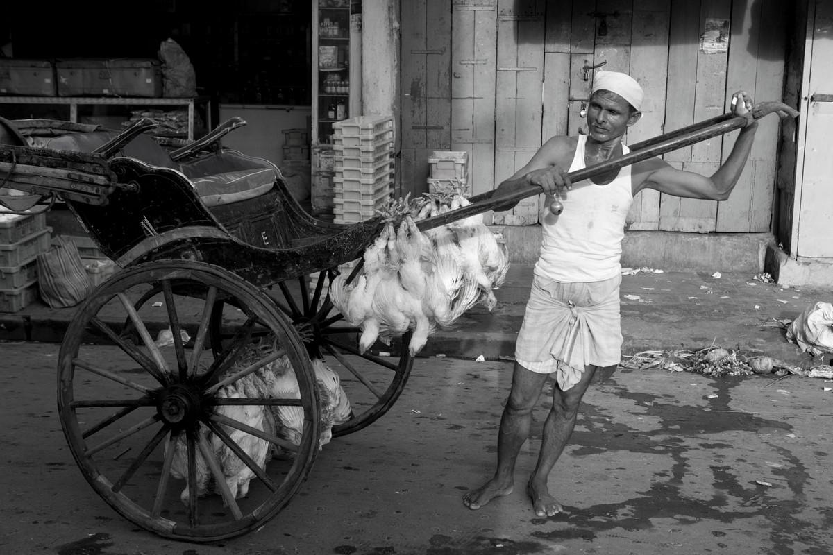 Фотопроект Палани Мохана — представители уходящей профессии рикш