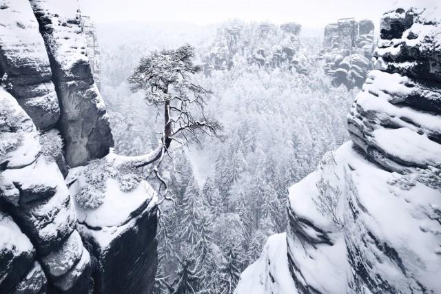 Суровая красота зимних пейзажей горных лесов Европы